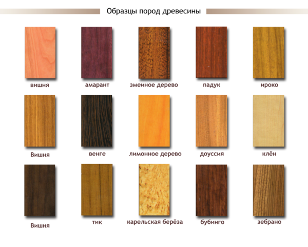 Образцы пород древесины