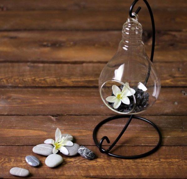 Флорариум мини в лампочке