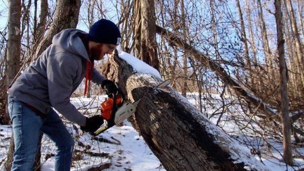 Режется подходящее дерево
