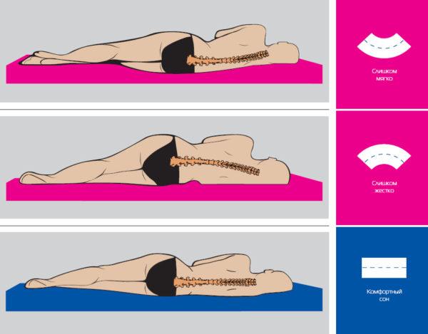 Жесткость матраса влияет не только на качество сна, но и на позвоночник