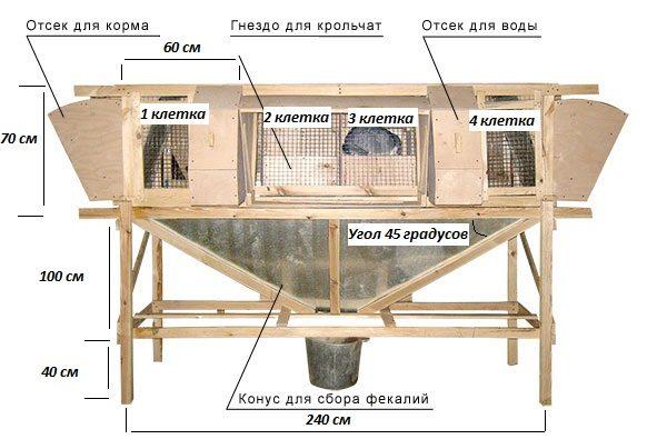 Устройство крольчатника по проекту И. Н. Михайлова
