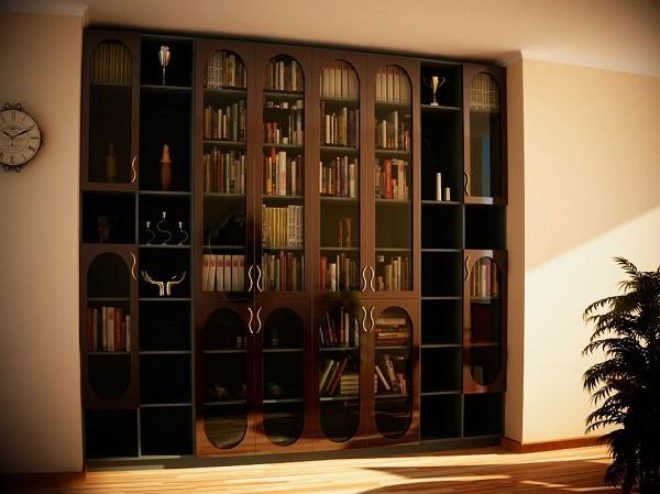 Необычный книжный шкаф с распашными дверями