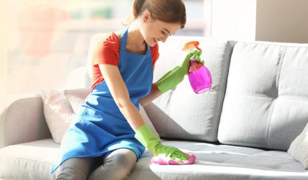 Перед покупкой конкретного чистящего средства необходимо изучить параметры выбора домашних химикатов