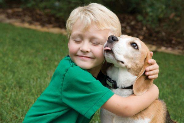 Особенное внимание обратите на то, что для животных и детей данные испарения являются наиболее опасными