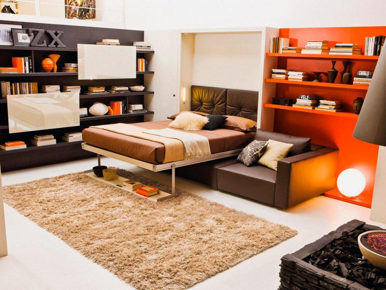 Совмещенная спальня-гостиная