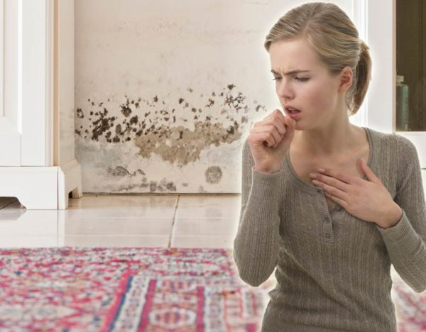 Симптомы, связанные с плесенью и влажностью в доме, могут быть хрипом, насморком, утренним кашлем, экземой