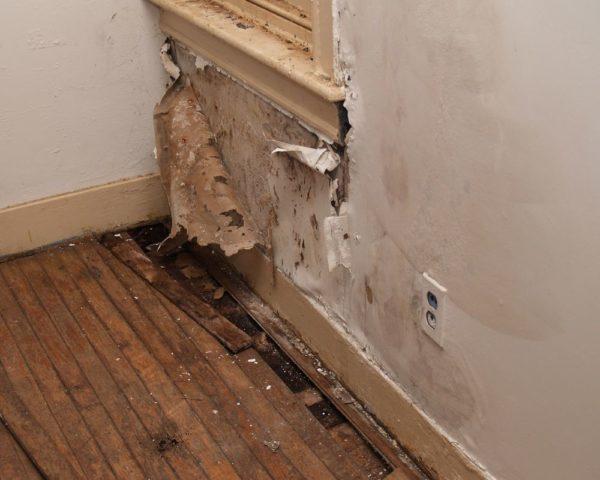 Сырость может нанести непоправимый вред не только поверхностям стен, пола и потолка, но и здоровью