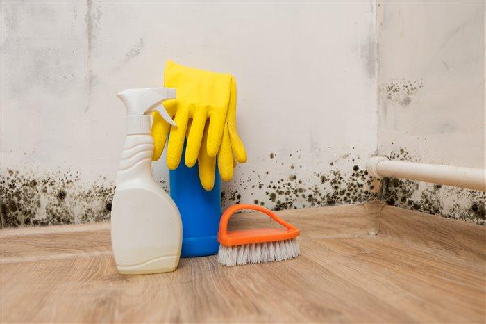 Как избавиться от сырости в квартире: лучшие методы